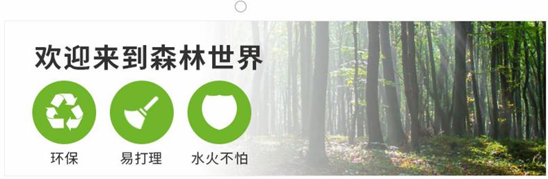 木紋磚產品詳情開頭.png